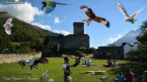 """Résultat de recherche d'images pour """"le donjon des aigles"""""""