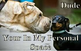 FunniestMemes.com - Funny Memes - [Dude Your In My Personal Space] via Relatably.com