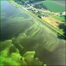 Natural Hazards of      USGS