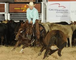 high brow cat daughter takes john deere open elite cat a six year old daughter of high brow cat took home the win for owner jerry durant of weatherford texas 20 in the john deere open finals