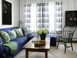 blue sofas living rooms and sofas on pinterest blue couch living room ideas