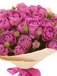 <b>Пионовидные розы</b> - купить недорого с бесплатной доставкой в ...