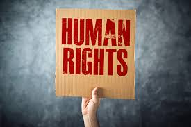 Image result for imagine this world human rights