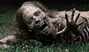 Image result for zombie prepper