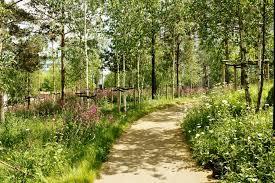 Small Picture Garden Design Garden Design with WILDFLOWER GARDEN PHOTOS WILD