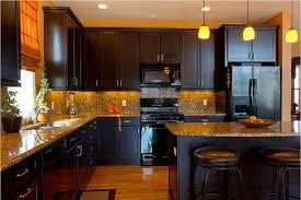dark kitchen cabinets with black appliances