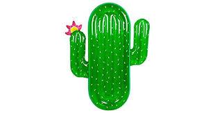 <b>Cactus Inflatable</b> Pool <b>Float</b> Toy: Buy Online at Best Price in UAE ...