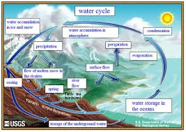 Image result for hydrologic cycle
