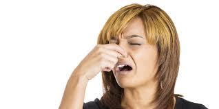 Image result for business bad smell