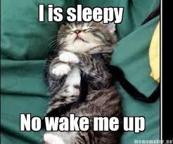 Meme Maker - Abby is so sleepy :p Meme Maker! via Relatably.com
