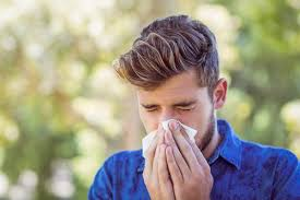 Allergic <b>Rhinitis</b>: 6 <b>Herbal</b> Remedies to Try | Sinus & Allergy ...