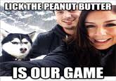 Jealous Husky | Know Your Meme via Relatably.com