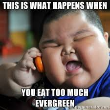 This is what happens when you eat too much Evergreen - fat chinese ... via Relatably.com