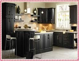 kitchen cabinet samples black kitchen cabinets samples kitchen cabinet color ideas new decorat