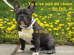French Subjunctive   Le subjonctif TakeLessons
