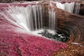 Resultado de imagem para o rio mais bonito do mundo