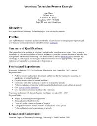 Imagerackus Pretty Professionally Written Manager Resume Example       key qualifications