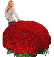 <b>Композиция из 1001</b> розы Сенсация – фото № 2 | Tulle skirt ...
