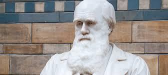 Resultado de imagem para O Que Darwin Não Podia Saber