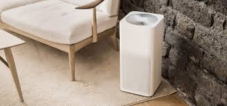 When Should You Change Your <b>Air Purifier Filter</b>?