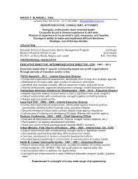 online copy editor resume s editor lewesmr sample resume the most non profit executive director