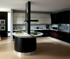 black kitchen cabinets s luxury island  l shaped white wood cabinet contemporary kitchen island double built