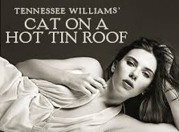 cat on a hot tin roof   ms kenny