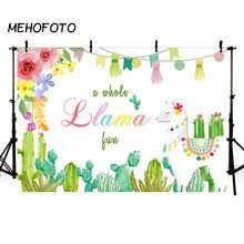 laeacco photography backgrounds mexican party cloud desert cactus pattern baby customized photographic backdrop for photo studio