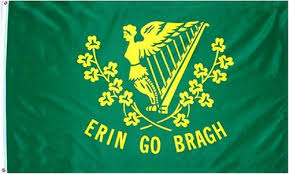 Image result for Irish flags
