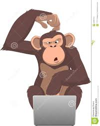 Image result for monkey at computer