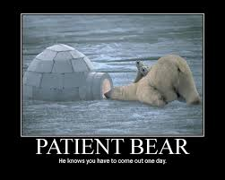 Tired Patient Bear | Patient Bear / Bear Sitting At Table | Know ... via Relatably.com