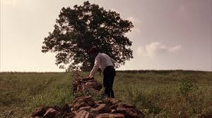 hope shawshank redemption essay