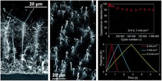 Silicon nanowires and nanotrees: elaboration and optimization of ...