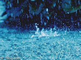 بالصور صور المطر