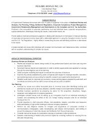resume sample for auditor free  seangarrette coresume