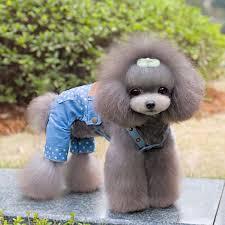 Fashion little star dog <b>Denim</b> Overalls <b>jean</b> pants <b>clothes</b> cute samll ...