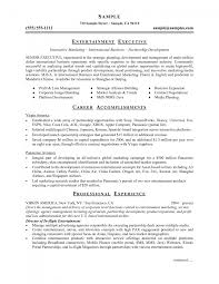 professional resume in word format cipanewsletter cover letter professional resume template creative
