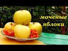 Моченых яблок антоновки в домашних условиях