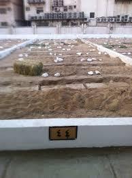 Mawlana Yunus Patel has Passed Away | IlmGate - ml-yunus-patel-grave1