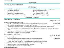 breakupus terrific resume profile example ziptogreencom breakupus inspiring unforgettable direct support professional resume examples to stand beauteous direct support professional resume