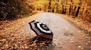 نتیجه تصویری برای فصل پاییز متن زیبا