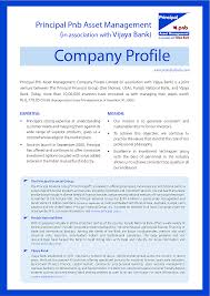 business profile template example xianning business profile template example sample of a company profile template resume data entry examples template
