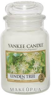 """Yankee Candle <b>Linden Tree</b> - <b>Ароматическая свеча</b> """"Липа"""": купить ..."""