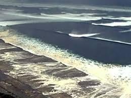 tsunami essayfive paragraph essay on an organizer about the tsunami emergency