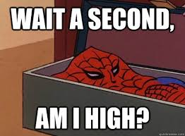 Wait a second, AM i high? - Spider-Meme Am i high - quickmeme via Relatably.com