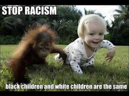 Stop racism meme | Funny Dirty Adult Jokes, Memes & Pictures via Relatably.com