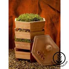 Kitchen Garden Sprouter Sprouters Trays Jars Sprouting Sacks
