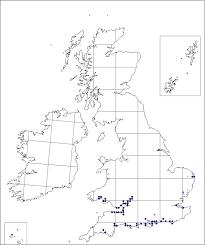Alopecurus bulbosus | Online Atlas of the British and Irish Flora