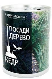 <b>Растения</b>   novaya-rossia-konkurs.ru