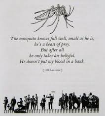 D.H Lawrence quotes on Pinterest | D H Lawrence, Self Pity and ... via Relatably.com